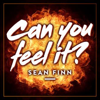 SEAN FINN - Can You Feel It? (Nitron/Sony)