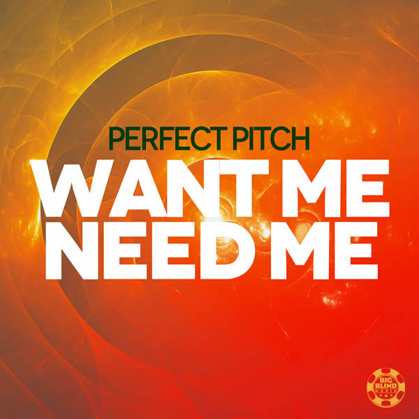 PERFECT PITCH - Want Me Need Me (Big Blind/Planet Punk/KNM)