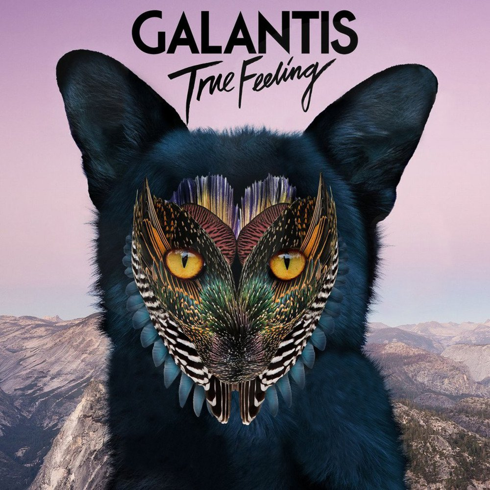 GALANTIS - True Feeling (Big Beat/Atlantic/Warner)