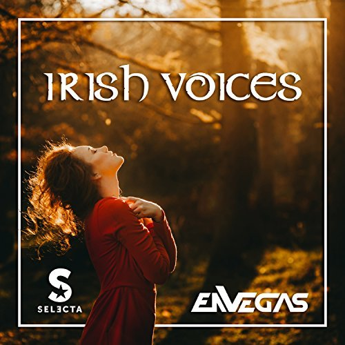DJ SELECTA & ENVEGAS - Irish Voices (Big Beef!/Tough Stuff!/KNM)