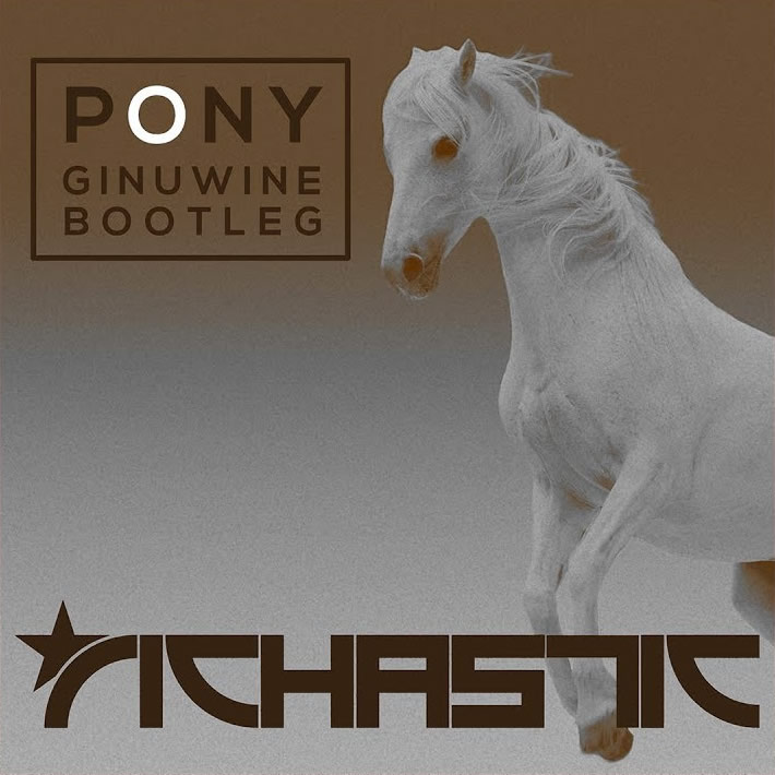 GINUWINE - Pony (Richstatic Bootleg) (Whitelabel)