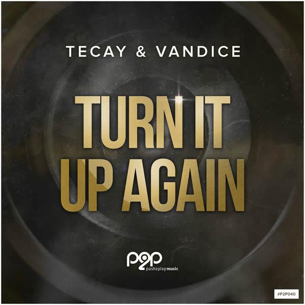 TECAY & VANDICE - Turn It Up Again (push2play music)