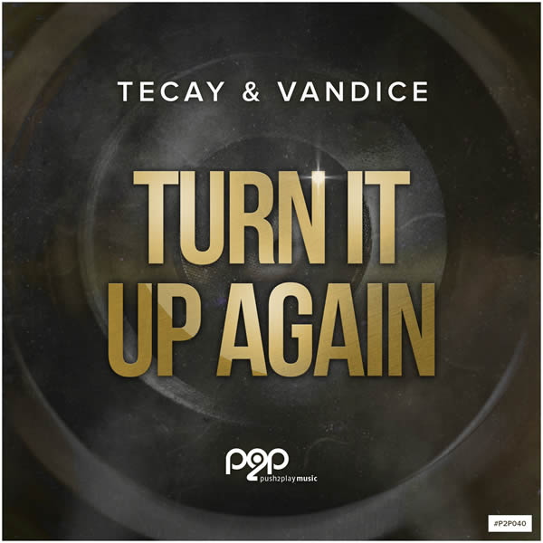 TECAY & VANDICE - Turn It Up Again (push2play music)
