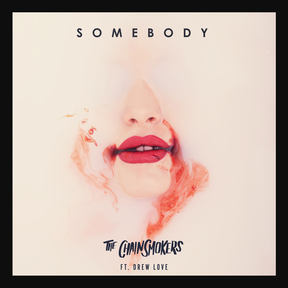 THE CHAINSMOKERS FEAT. DREW LOVE - Somebody (Columbia/Sony)