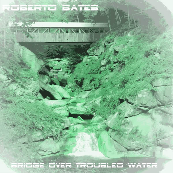 ROBERTO BATES FEAT. VIOLA - Bridge Over Troubled Water (bgRECORDS/KNM)