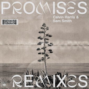 CALVIN HARRIS & SAM SMITH - Promises (Columbia/Sony)