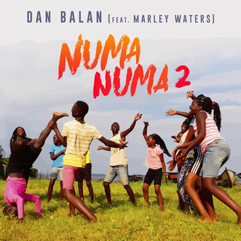 DAN BALAN FEAT. MARLEY WATERS - Numa Numa 2 (Disco Wax International/Columbia/Sony)