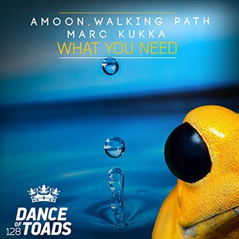 AMOON, WALKING PATH, MARC KUKKA - What You Need (Dance Of Toads/Label Worx)