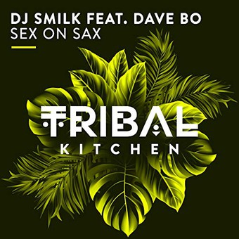 DJ SMILK & DAVE BO - Sex On Sax (Tribal Kitchen)