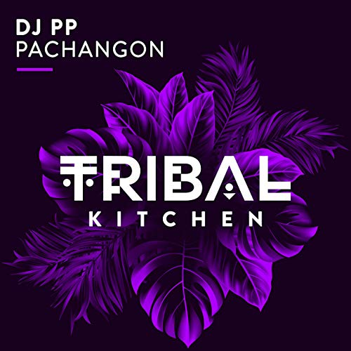 DJ PP - Pachangon (Tribal Kitchen/Housesession/Believe)