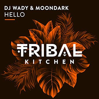 DJ WADY & MOONDARK - Hello (Tribal Kitchen)