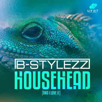 B-STYLEZZ - Househead (Lit Bit/Planet Punk/KNM)