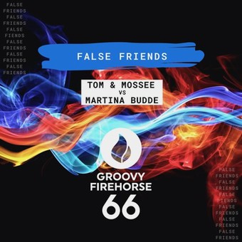 TOM & MOSSEE VS. MARTINA BUDDE - False Friends (Groovy Firehorse 66)