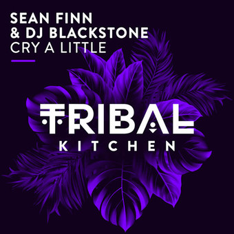 SEAN FINN & DJ BLACKSTONE - Cry A Little (Tribal Kitchen)