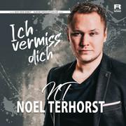 NOEL TERHORST - Ich Vermiss Dich (Fiesta/KNM)