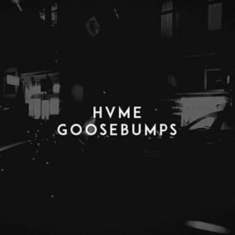 HVME - Goosebumps (B1/Sony)