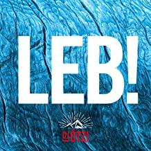 DJ ÖTZI - LEB! (Electrola/Universal/UV)