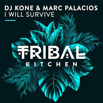 DJ KONE & MARC PALACIOS - I Will Survive (Tribal Kitchen)