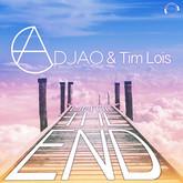 ADJAO & TIM LOIS - Until The End (Mental Madness/KNM)