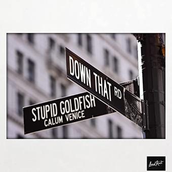 STUPID GOLDFISH & CALUM VENICE - Down That Road (LoudKult)