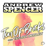 ANDREW SPENCER FEAT. TAYLOR MOSLEY - Ton Of Bricks (Mental Madness/KNM)