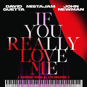 DAVID GUETTA, MISTAJAM & JOHN NEWMAN - If You Really Love Me (How Will I Know) (What A DJ/Warner)