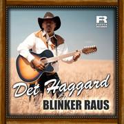 DET HAGGARD - Blinker Raus (Fiesta/KNM)