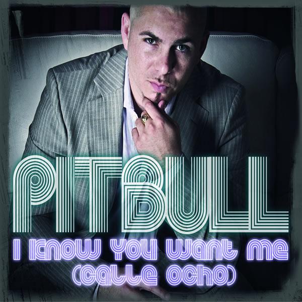 PITBULL - I Know You Want Me (Calle Ocho) (Universal/UV)