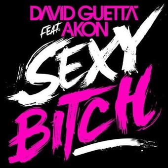 DAVID GUETTA FEAT. AKON - Sexy Bitch (Virgin/EMI)