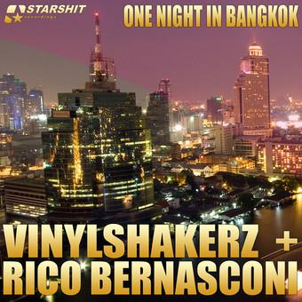 VINYLSHAKERZ + RICO BERNASCONI - One Night In Bangkok (Starshit/Kontor New Media)