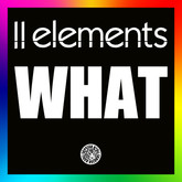 2ELEMENTS - What (Tiger/Kontor/Kontor New Media)