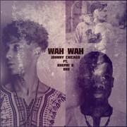 JOHNNY CHICAGO FEAT. KHEPRI & OKE - Wah Wah (Tkbz Media/Virgin/Universal/UV)