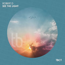 ROBERT D - See The Light (TB Clubtunes/Toka Beatz/Believe)