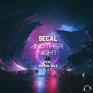 SECAL FEAT. SOLARA WILD - Another Night (Mental Madness/KNM)