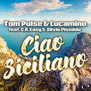 TOM PULSE & LUCAMINO FEAT. C.R. EASY & SILVIO PISEDDU - Ciao Siciliano (Mental Madness/KNM)